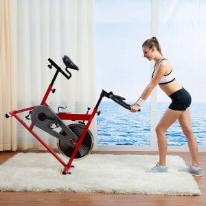 Sunny Indoor Cycling Bike Sf-B1001