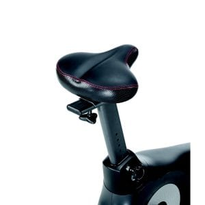 Schwinn 170 Upright Bike