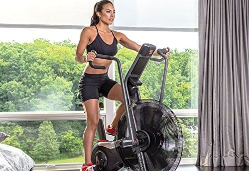 Enjoyable Schwinn Airdyne Pro Review Specs Pros Cons And More Ncnpc Chair Design For Home Ncnpcorg